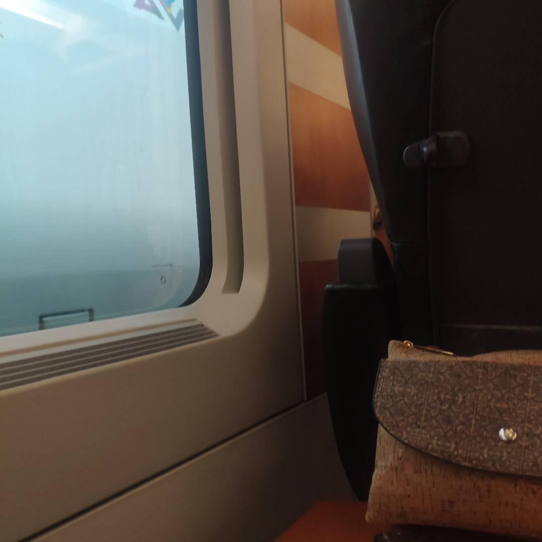 Viajar en tren de alta velocidad